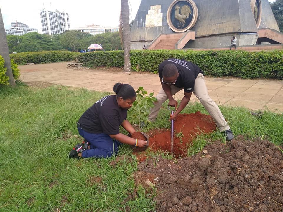 Planting trees at Uhuru Park Nairobi