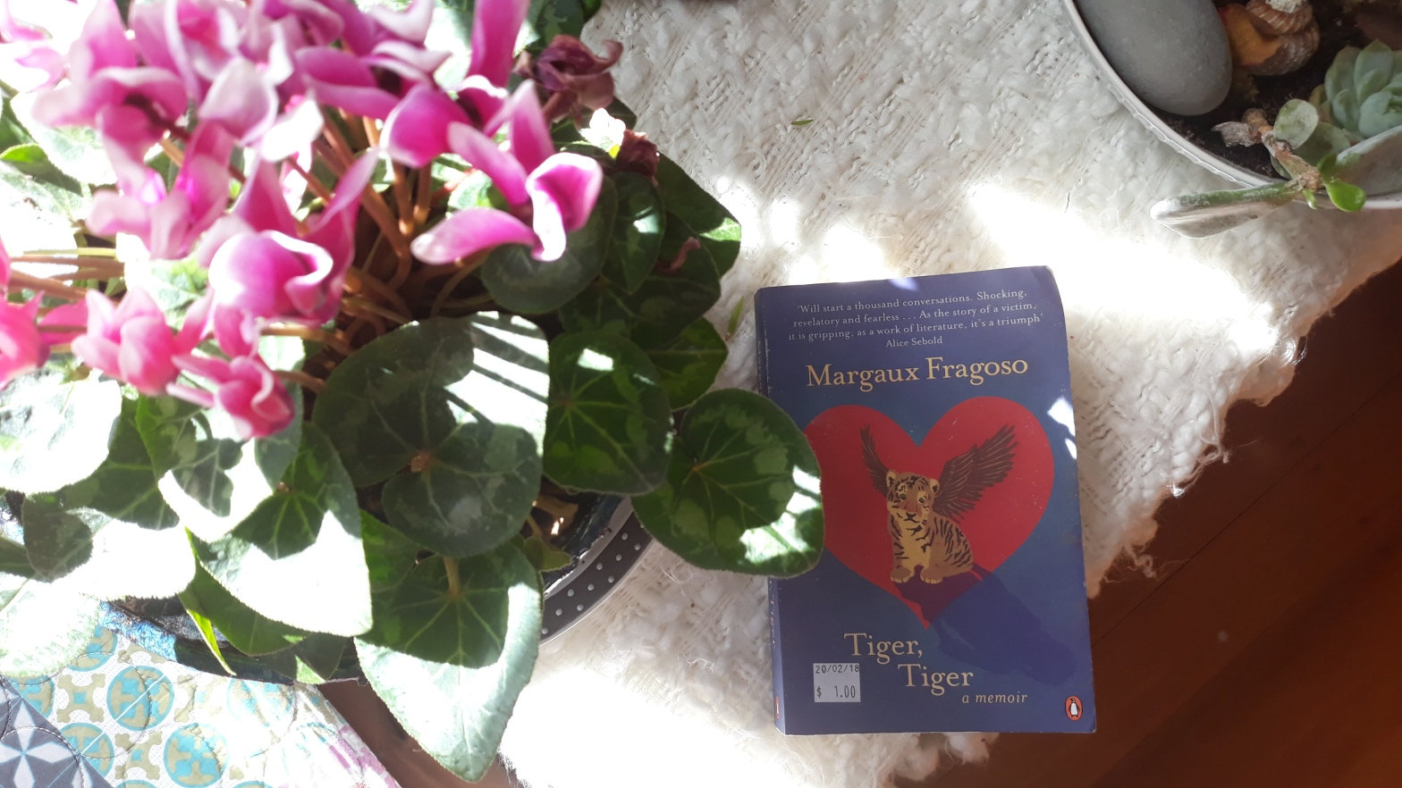 Book Review: Tiger Tiger by Margaux Fragoso