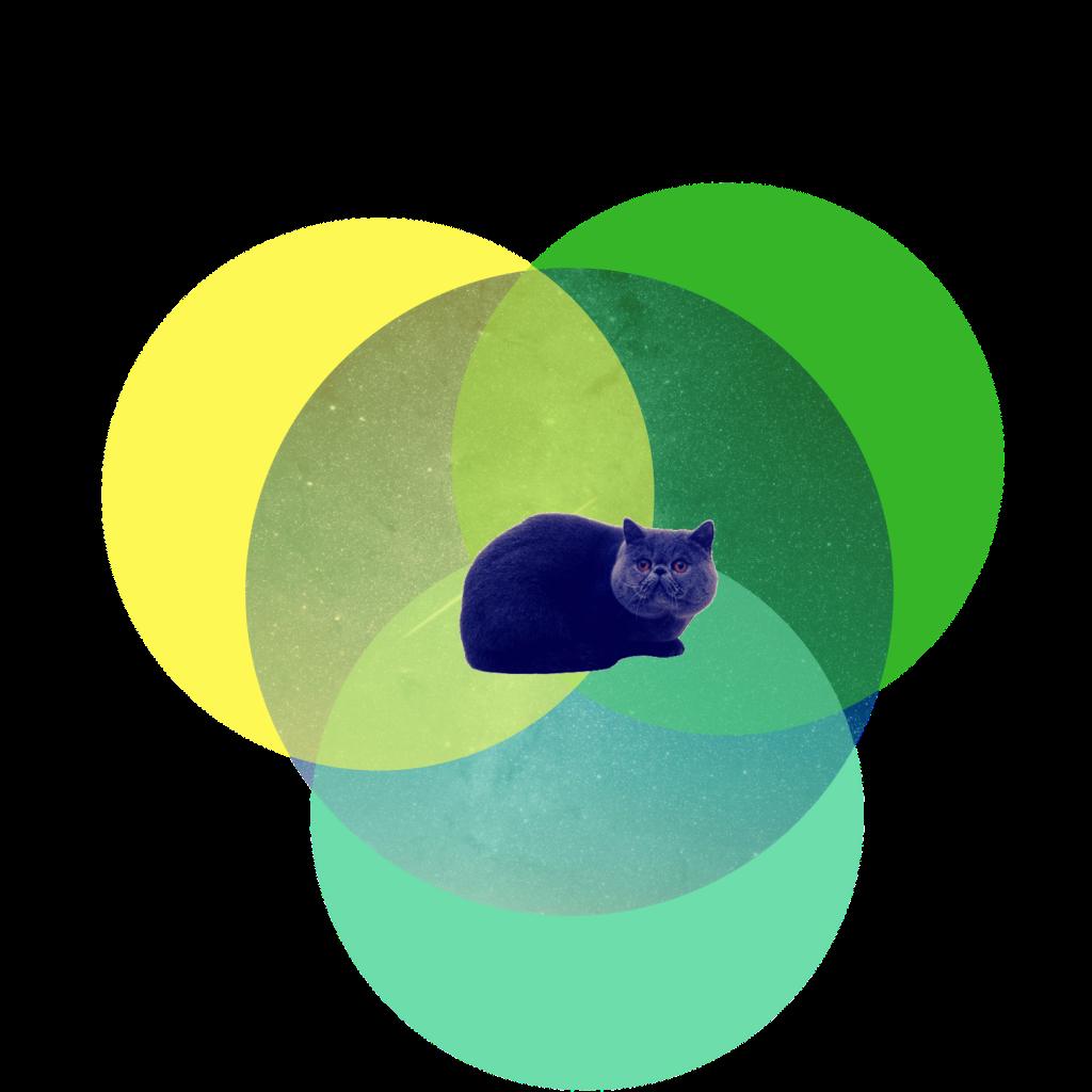 content catnip logo 2018