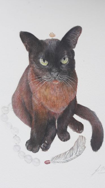 Featured Artist: Jen Muir's Photorealistic Pet Portraits