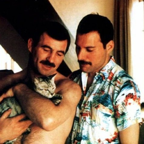 Freddy Mercury really loved his cats