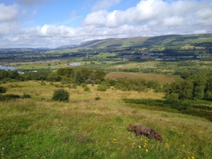 The Kelvin Valley from Barrhill Iron Age fort