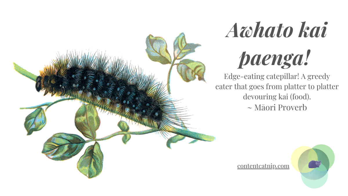 Awhato kai paenga! Edge-eating caterpillar! A greedy eater that goes from platter to platter devouring food at parties. ~ Māori Proverb #TeWikioteReoMāori #MāoriLanguageWeek #MahuruMaori
