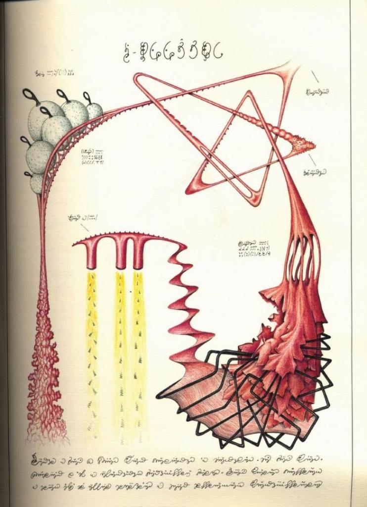 Book Review: Codex Seraphinianus by Luigi Serafini