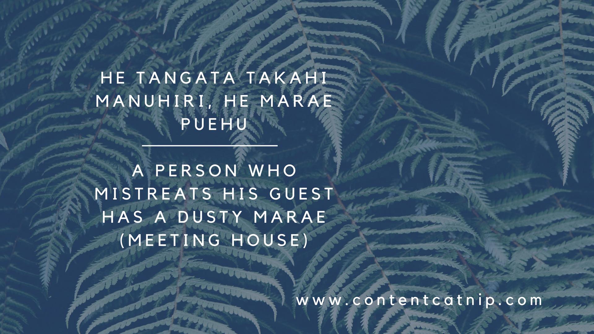 Te Ao Maori and the aesthetics of cosiness