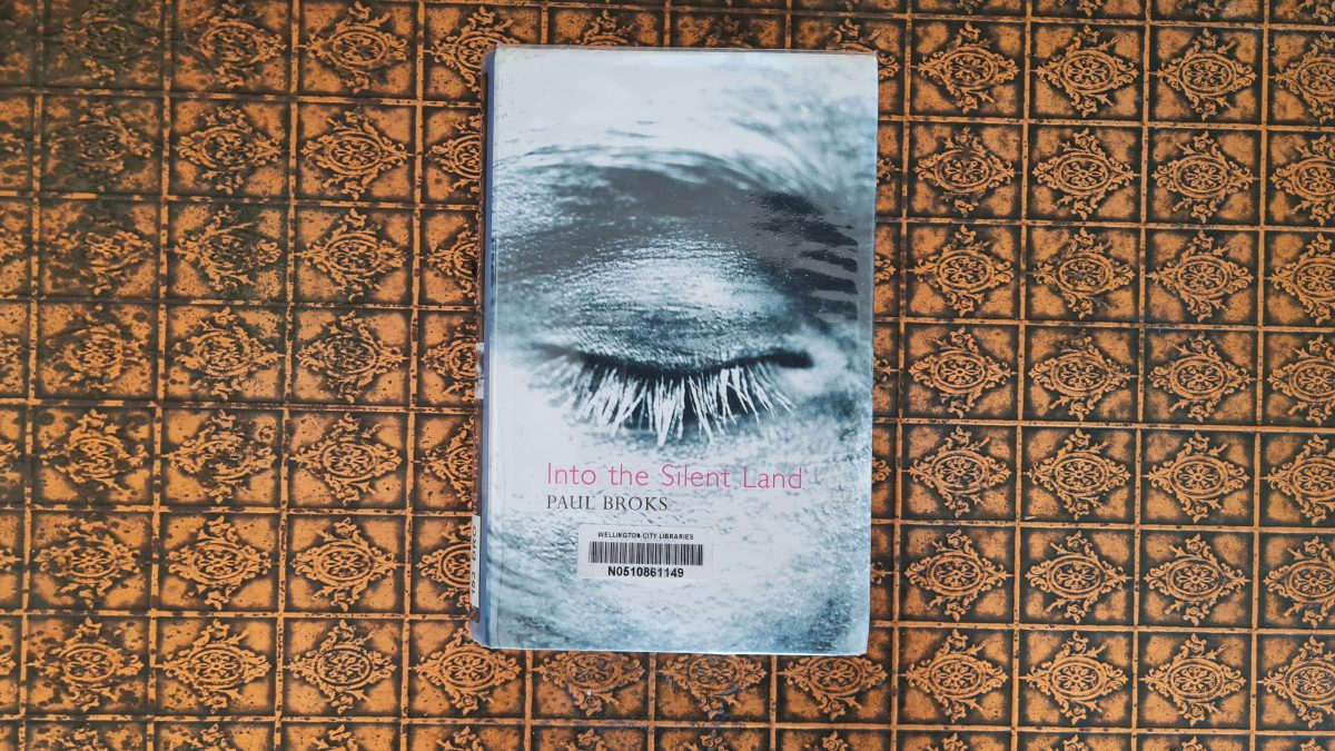 Book Review: Into the Silent Land by Paul Broks
