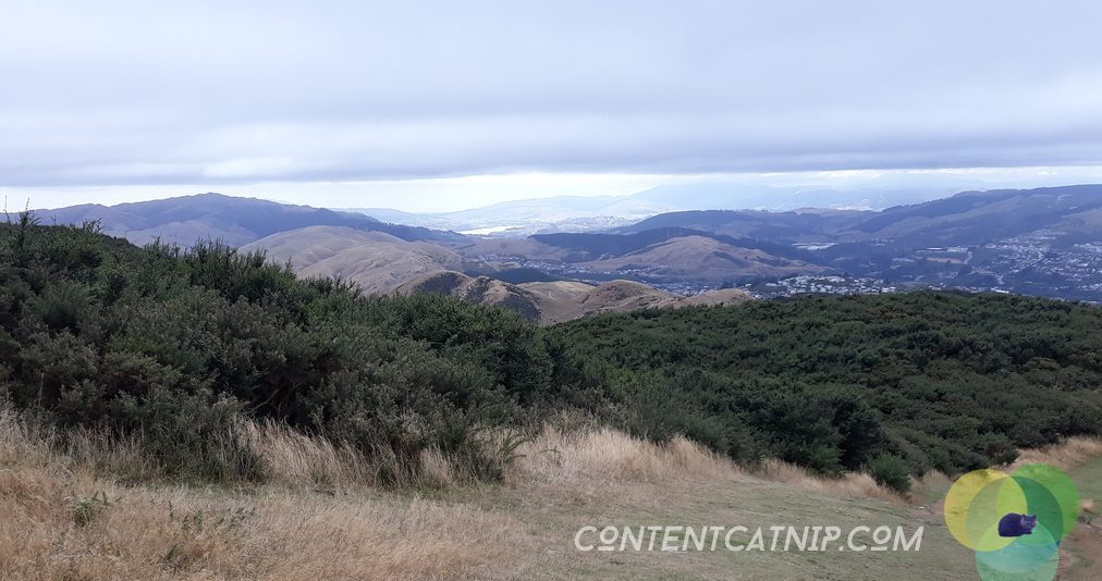 Wellington's moody views from the top of Mount Kaukau