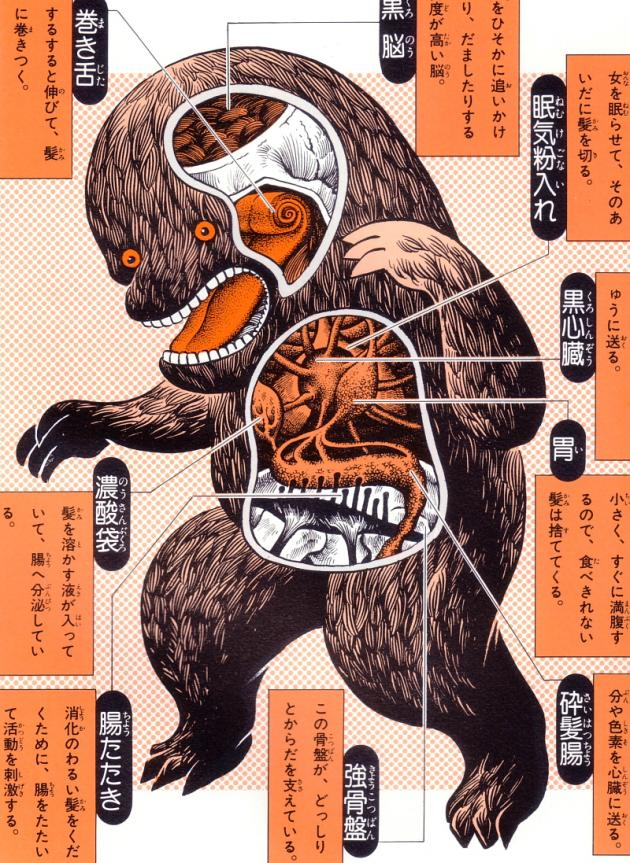 An Anatomical Guide to Godzilla and other Gigantic Japanese monsters