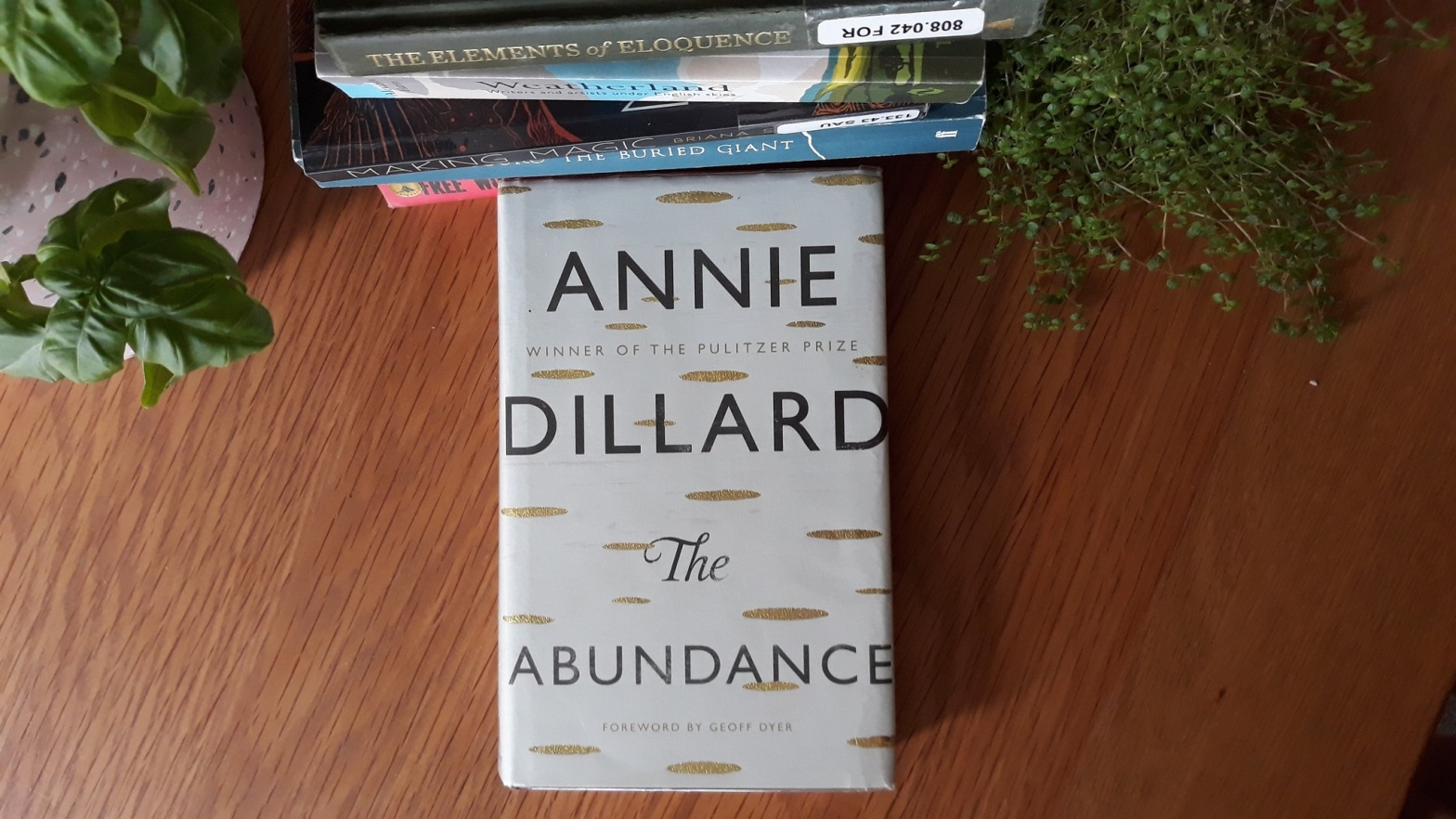 Book Review: The Abundance by Annie Dillard