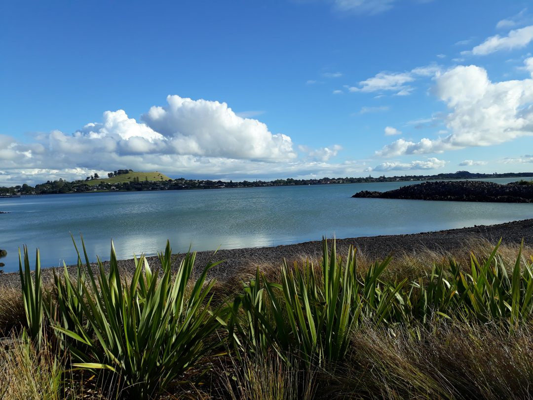 Foreshore cycle path in Onehunga