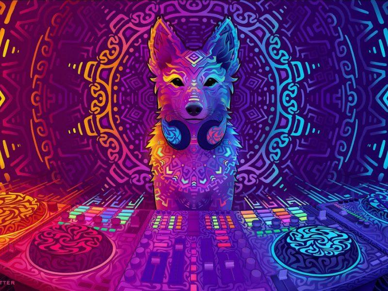 Disco Dingo by Sylvia Ritter