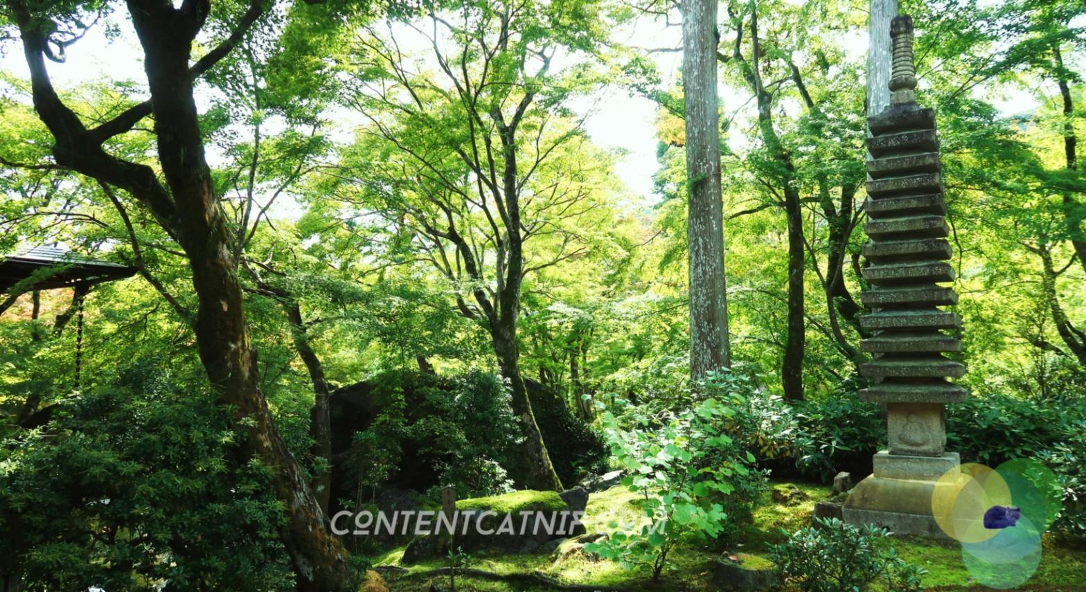 Ryoan-Ji zen garden in Arashiyama, Kyoto. Content Catnip 2018 www.contentcatnip.com