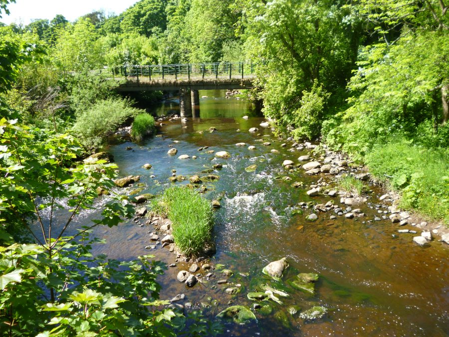 Travel: Walks along the Water of Leith, Edinburgh