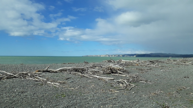 Travel: Napier's remote beaches and wineries by bike