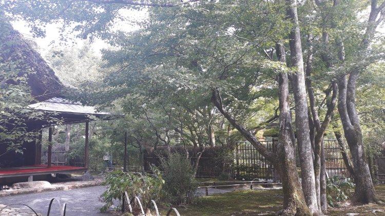 Tenryu-ji temple's zen garden is nirvana