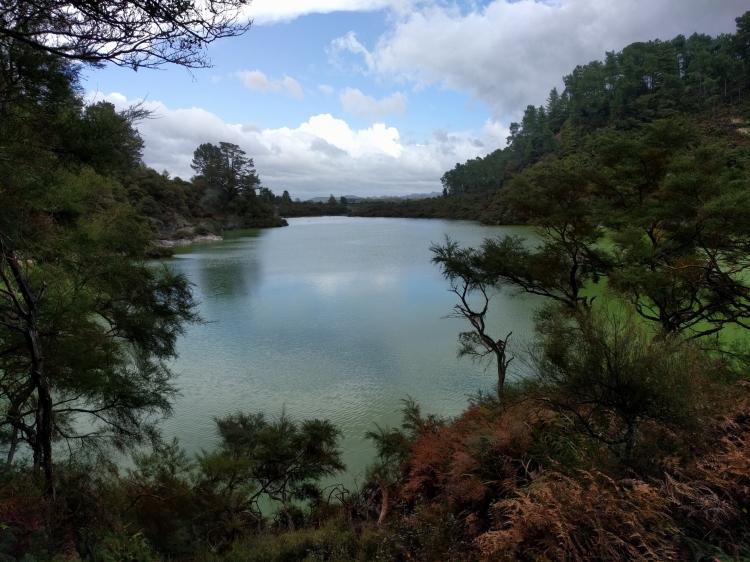 The Champagne Pool at Waiotapu