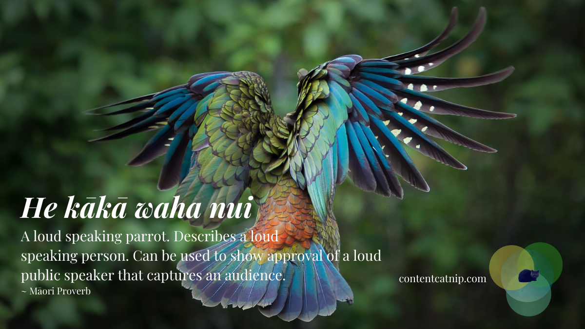 He kākā waha nui - A loud speaking parrot. Describes a loud speaking person. Can be used to show approval of a loud public speaker than captures an audience. ~ Māori Proverb #TeWikioteReoMāori #MāoriLanguageWeek #MahuruMaori