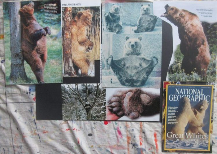 Animal mood boards - Bears