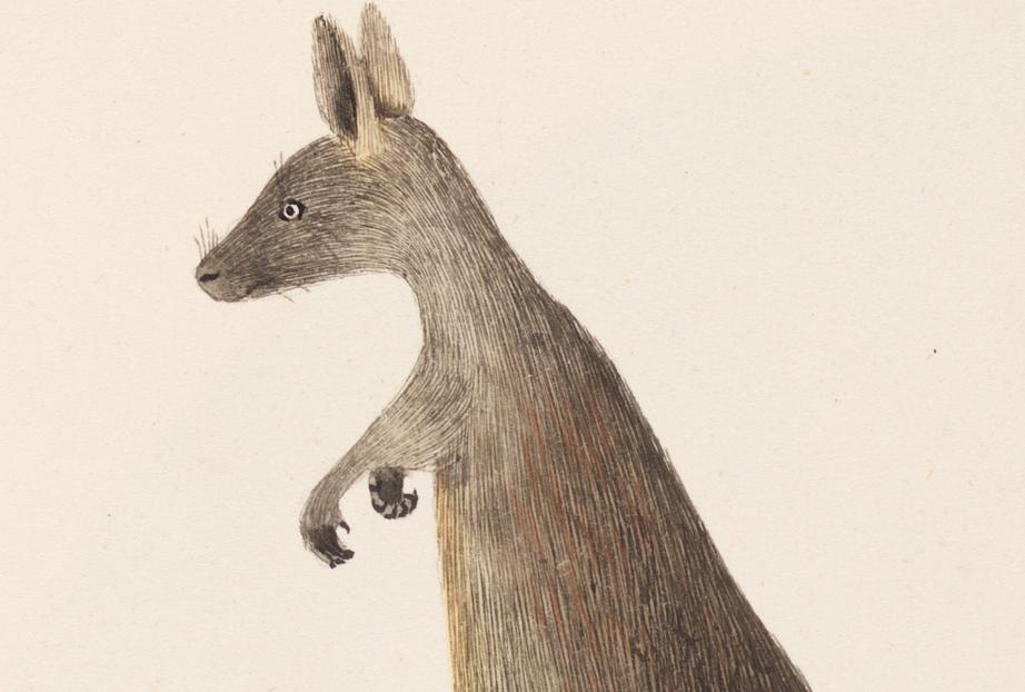 Book Review: Animals Make Us Human: Edited by Leah Kaminsky and Meg Keneally