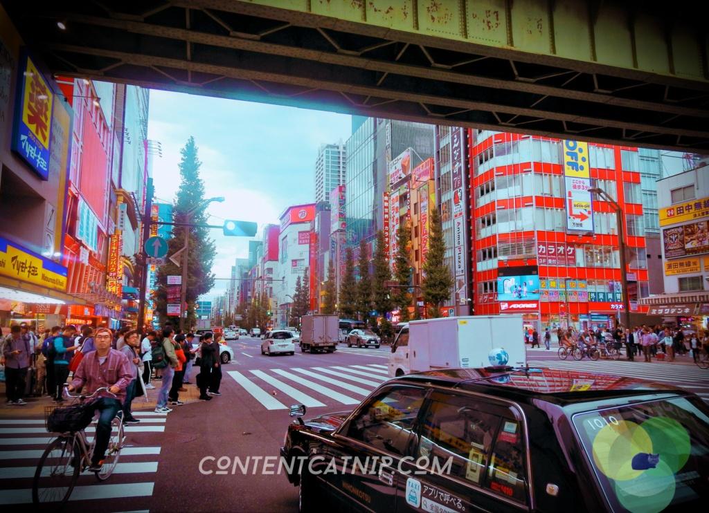 Ahikabara Tokyo during the day Copyright © Content Catnip 2018 www.contentcatnip.com