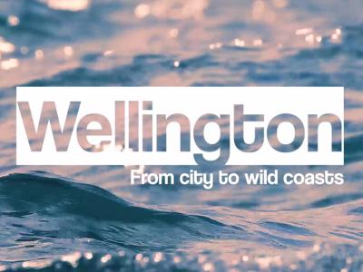 Travel: Wellington from city to wild coasts