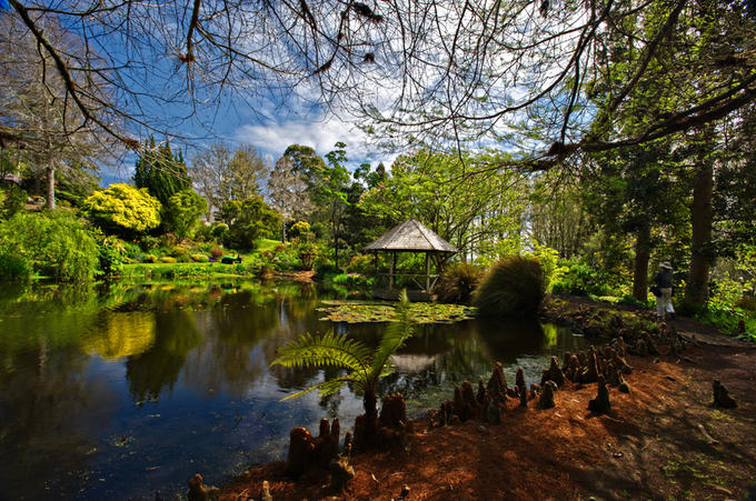 Australia and New Zealand's Coolest Gardens