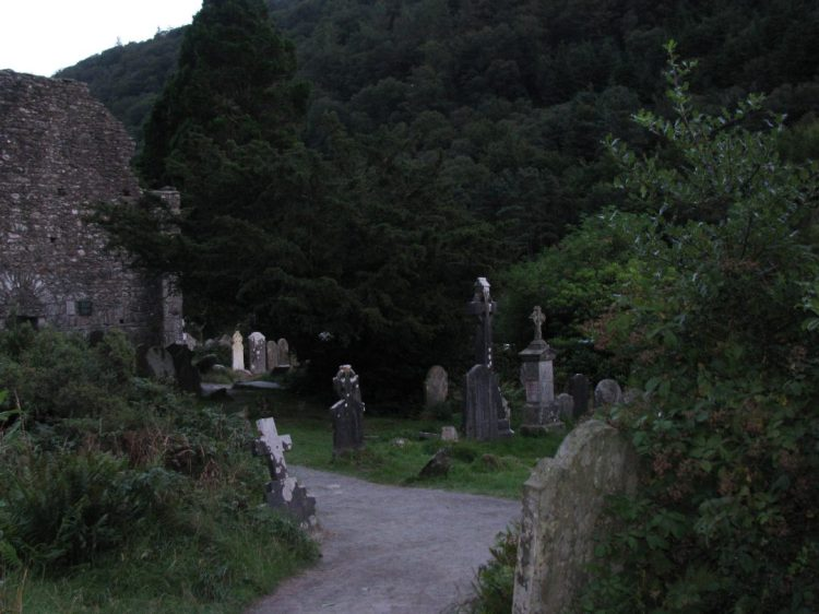Among the Irish Faeries and Norse Gods
