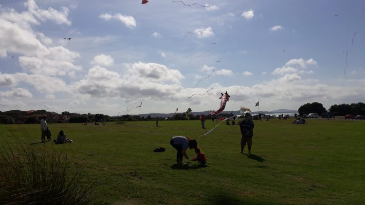 All About Maori Kite Making. Copyright Content Catnip 20187