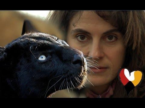 Anna Breytenbach: Inspirational Animal Communicator