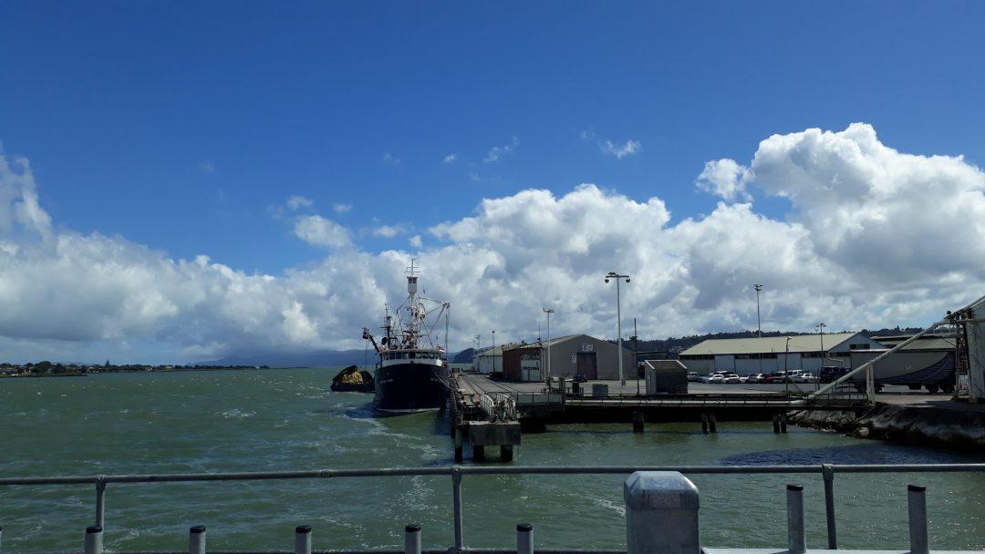A view onto Manukau harbour while crossing Mangere Bridge