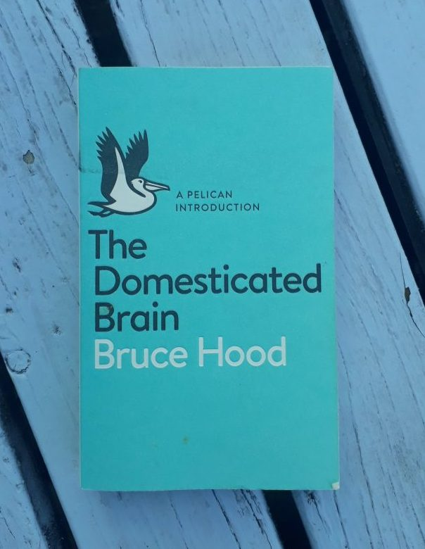 Book Review: The Domesticated Brain by Bruce Hood