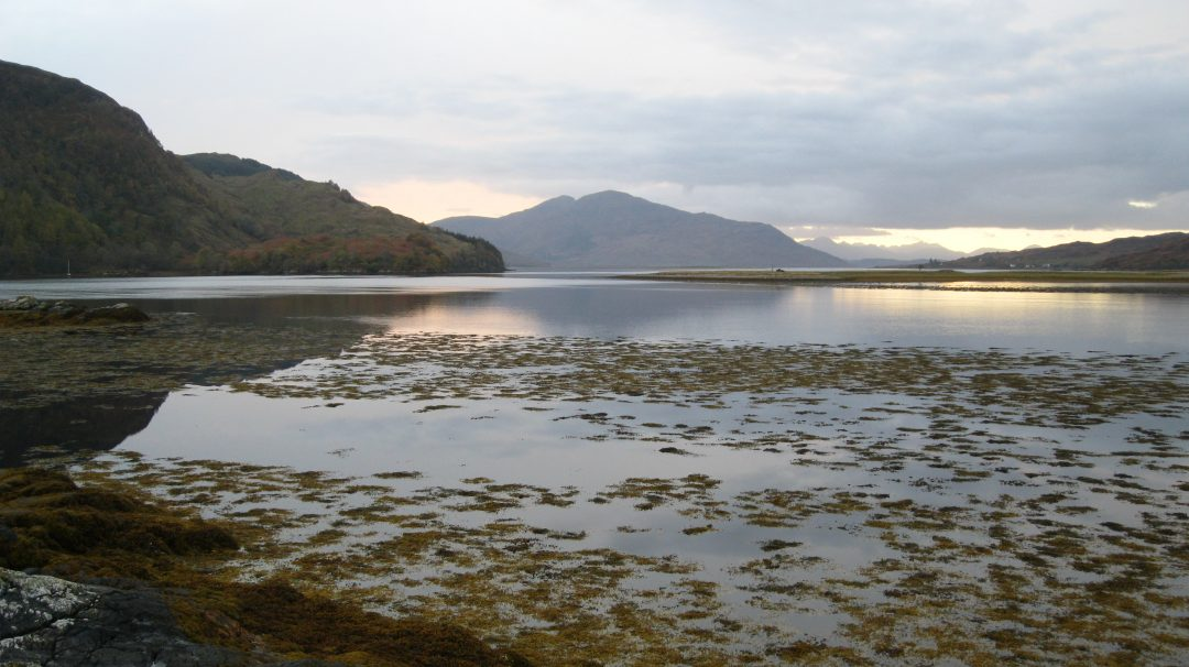 Travel: Eileann Donan Castle, Kyle of Lochalsh, Scotland. Copyright Content Catnip 2010