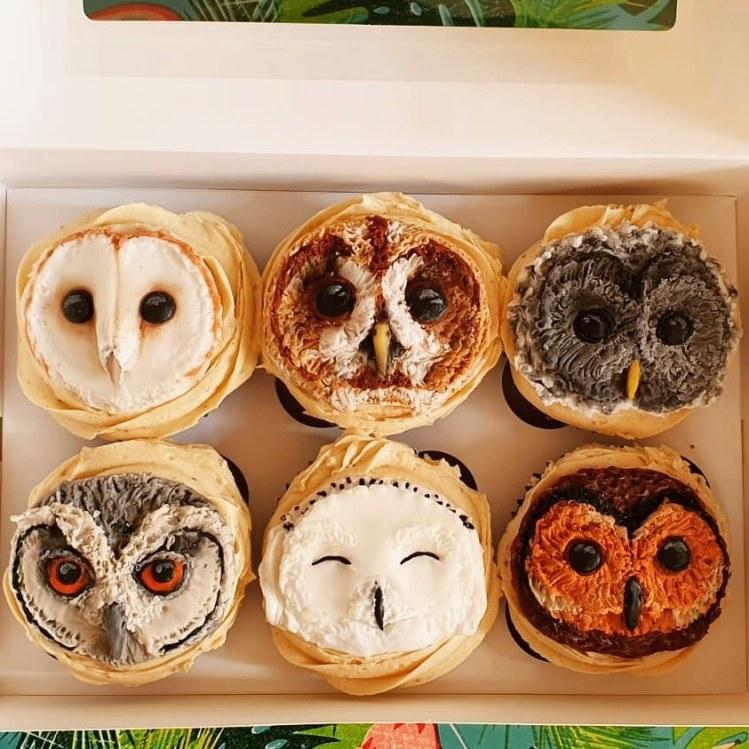Vegan owl cupcakes