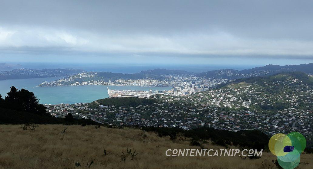 Looking down on epic Wellington from Mt Kaukau