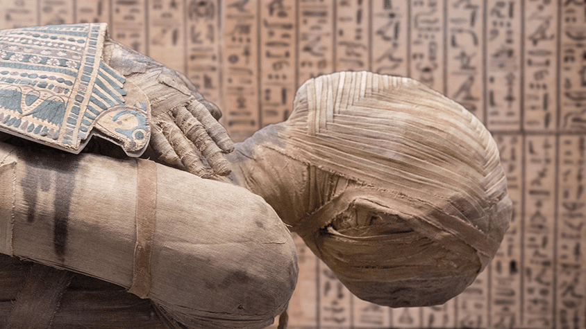The hunger for mummies in Edo period Japan